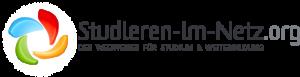logo-stin