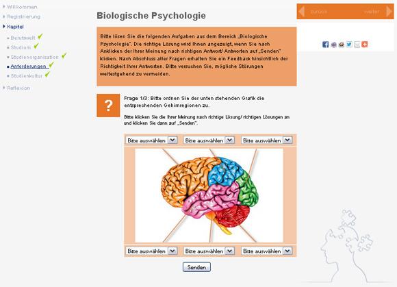 Studienorientierung_Psychologie_Aufgabe_Bio