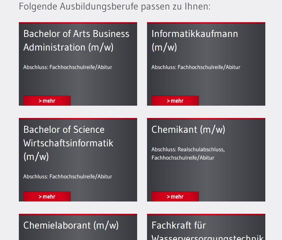 Remondis_AzubiCheck_Feedback2