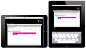 Mobile_Assessment_Tablet2